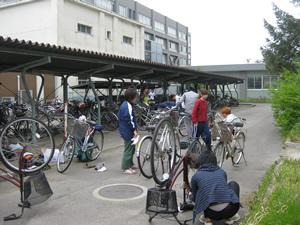 キャンパス内で中古自転車を整備・修理(2011年5月14日)