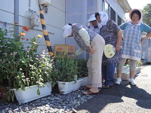 南三陸町の仮設住宅へ花を届け、「玄関がきれいになる」と喜ばれた(2012年9月14日)