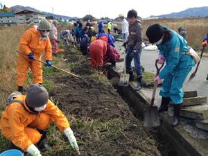 側溝の泥だし作業(2012年11月18日・陸前高田市)