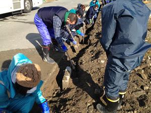 側溝の泥だし作業(2012年12月16日・陸前高田市)