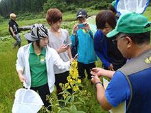 森の案内人による説明を受ける参加者たち